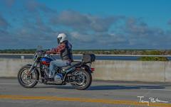 Plaid 2 (tbottom) Tags: daytona biketoberfest bikeweek bike motorcycles staugustine florida fortmatanzas terrybottom