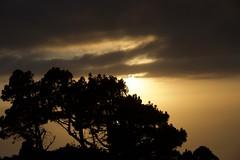 Bon Dimarts de núvols davant de la Casa del Volcán, Fuencaliente, Canaries. (heraldeixample) Tags: heraldeixample bcn lapalma núvols clouds nubes skyer nuages cymylau nuvole 雲 nuvens nori 云 облака wolken nwn martesdenubes ngc palma spain espanya españa spanien fuencaliente