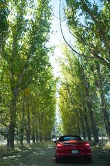 L1040983.jpg (Jorge A. Martinez Photography) Tags: leica leicaq leicaq116 porsche flatandhappy club drive westlake village ojai 33 911 cayman daemon hills road blue sky