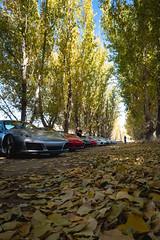 L1040999.jpg (Jorge A. Martinez Photography) Tags: leica leicaq leicaq116 porsche flatandhappy club drive westlake village ojai 33 911 cayman daemon hills road blue sky