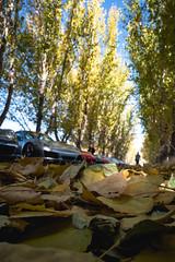 L1050003.jpg (Jorge A. Martinez Photography) Tags: leica leicaq leicaq116 porsche flatandhappy club drive westlake village ojai 33 911 cayman daemon hills road blue sky