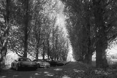 L1050012.jpg (Jorge A. Martinez Photography) Tags: leica leicaq leicaq116 porsche flatandhappy club drive westlake village ojai 33 911 cayman daemon hills road blue sky