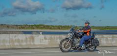 Orange Strip (tbottom) Tags: daytona biketoberfest bikeweek bike motorcycles staugustine florida fortmatanzas terrybottom