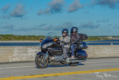 Mr & Mrs Goldwing 1 (tbottom) Tags: daytona biketoberfest bikeweek bike motorcycles staugustine florida fortmatanzas terrybottom