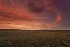 DSC08459 (MorningStarrPhotography505) Tags: easternwashington washington wa sonya6000 a6000 plains sunset clouds goldenhour twilighthour