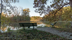 Jensen Lake (Lzzy Anderson) Tags: jensenlake lebanonhills eagan minnesota october 2019 autumn fall lake water reflection season leaf changingleaves leafchange woods forest bench