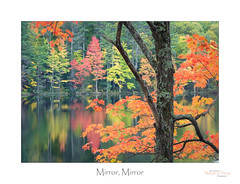 Mirror, Mirror (baldwinm16) Tags: northwoods october wi wisconsin autumn autumncolor autumnlandscape autumnleaves autumnal fall fallcolor falllandscape fallleaves nature outdoors outside reflectioninwater reflections season natureofthingsphotography