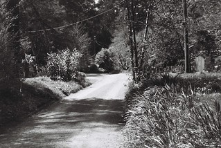 Old Coach Road (photo 8)