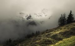 Hidden Majesty (Netsrak) Tags: alpen baum bäume europa kleinwalsertal landschaft natur nebel schnee wald fog mist snow trees europe eu skilift wolken clouds berg berge mountain mountains gebirge