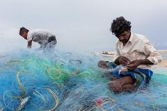 Manapad, 2019 (bmahesh) Tags: cwc cwc752 chennaiweekendclickers manapad tamilnadu india people beach life street fishermen fishingnet canon sigma canoneos5dmarkiii sigma35mmf14art