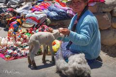 Encounter at the Patapampa pass (marko.erman) Tags: peru patapampa pass travel high altitude souvenirs tourists southamerica latinamerica woman
