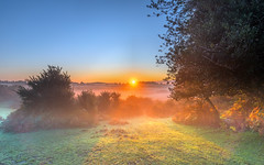 Misty Valley (nicklucas2) Tags: landscape newforest nature andrewsmare sunrise mist sun sunburst