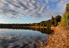 Autumn (Patricia Buddelflink) Tags: lake cloud landscape nature autumn colour