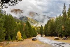Vallée d'Arvieux en Queyras entre deux averses (jean-louis21) Tags: queyras arvieux forêt automne nuages couleurs forest rain mélèzes