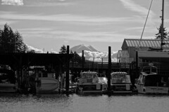Mount Rainier from Gig Harbor (fernside) Tags: gigharbor washington fishingvillage fishingboats mountrainier