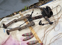 Grisly toy (gailhampshire) Tags: papua new guinea