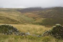 WildValley (Tony Tooth) Tags: nikon d600 tamron 2470mm landscape countryside moors moorland wildmoor wildmoorstonebrook buxton derbyshire england drizzle october