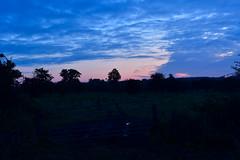 Good Morning. (Hidden in the flash.) Tags: norfolk england uk unitedkingdom nikon nikkor d500 nikond500 landscape sunrise sun field silhouette countryside