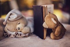 A fairy tales (Inka56) Tags: books htbt crazytuesday toys teddybear