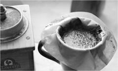 caffenol or how to brew developer (logoistus) Tags: nikonf4 hp5 caffenol