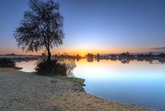 Mare Sunrise (nicklucas2) Tags: landscape newforest nature andrewsmare sunrise mist pond water