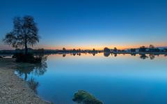 Flat Calm (nicklucas2) Tags: landscape newforest nature andrewsmare sunrise mist pond water