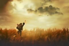 Take me with you (Ans van de Sluis) Tags: 2019 ansvandesluis august ooijpolder bracketing clouds cloudy corn flora floral landscape maize nature sky summer portrait selfportrait art fineart painterly surreal mystical