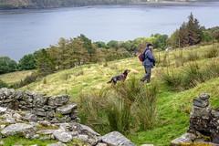 Uphill from the broch (allybeag) Tags: broch lochbroom rhiroy ancientmonument scotland drystone walls views steve kiri