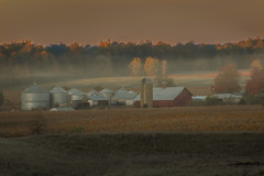 Foggy Farm Morning (markburkhardt) Tags: