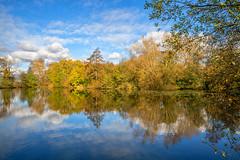 Autumn reflections (Steve Samosa Photography) Tags: england unitedkingdom sthelens autumn woodland dam bluesky autumncolours merseyside waterreflections fishingpond sherdleypark