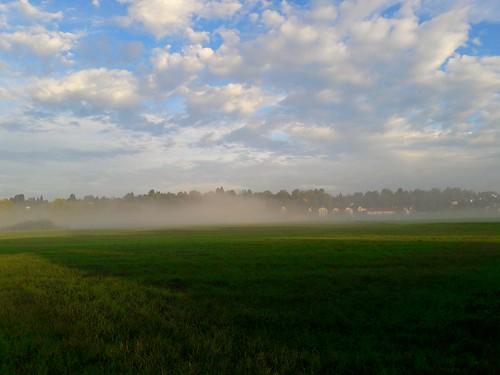 Fog ©  dmytrok