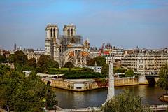 Paris  Notre Dames, Wiederaufbau, Pont de la Tournelle, 2.Tag (nbrausse) Tags: 2tag 201908 france frankreich paris pontdelatournelle notredames wiederaufbau