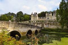 Debout là-dedans ! (Le.Patou) Tags: bridge france reflection green castle history reflet reflect scape legend indreetloire centrevaldeloire rignyussé fz1000 jsslll pont
