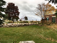 Library Gardens (Lester Public Library) Tags: 365libs librariesandlibrarians library libraries grass garden gardens tree trees leaves fall building clouds cloudy lakemichigan tworiverswisconsin lesterpubliclibrarytworiverswisconsin wisconsin
