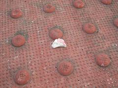Archaeologist's Dream (Lunken Spotter) Tags: columbus ohio oh centralohio franklincounty suburbs suburban suburbia neighborhood neighborhoods sidewalk pottery shard shards broken litter trash discarded