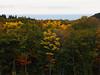 At the foot of mountain (murozo) Tags: autumn autumnal tint tree sea sky yellow nikaho akita japan 秋 紅葉 木 森 黄 forest 秋田 日本 空 海