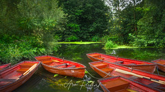 Flatford Mill Rowing Boats (Aron Radford Photography) Tags: yellow flatford mill east bergholt essex suffolk john constable rowing boat water trees pond river stour pleasure reflections colchester riverside landscape artist nature tranquil peaceful no people