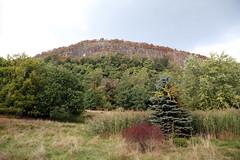 IMG_6988 (dougschneiderphoto) Tags: rocklandcounty newyork hookmountain state park fall autumn usa nature hill mountain