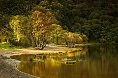 Autumn in Glendalough 7 (Kevin_Barrett_) Tags: ireland wicklow glendalough landscape scenic scenery serene trees lake water reflections woods autumn fall