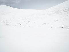 In the mountainvalley (Fjällkantsbon) Tags: lappland sverige evamårtensson borgafjäll doroteakommun västerbottenslän sapmi fjäll mountain