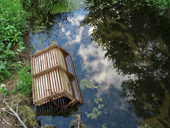 (Lunken Spotter) Tags: columbus ohio oh centralohio franklincounty suburbs suburban suburbia neighborhood neighborhoods creek creeks waterway waterways trash litter discarded waste wasted swing swings reflections reflected clouds leaf leaves branches plant plants