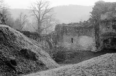 Le château de Ferrette (DavidB1977) Tags: france alsace ferrette nb bw monochrome canon argentique film a1