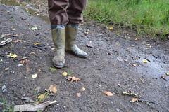 322 -- Dunlop hevea Ripped Wellies -- Bottes Hevea Dunlop trouées --  Gummistiefel Undicht -- Gescheurde laarzen (HeveaFan) Tags: rubberboots rubberlaazen 在泥里的靴子橡胶 kaplaarzen ゴム長靴 gummistiefel 威灵顿长靴 stiefel stivali stövlar ブーツ dunlop hevea aigle ripped wornout rainboots regenlaarzen wellies bottes wellworn caoutchouc galoshes wreckled trashed regenstiefel waterlaarzen soles tuinlaarzen loch leaky damaged trouée undicht versleten laarzen wellington kaput mud boue fertig riss gomma trou abgelatscht kaputt lek gumboots boots bottas vredesteinlaarzen vredesteinwellies vredesteinstiefel