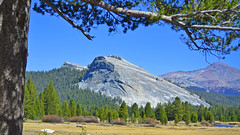 Lembert Dome over Tuolumne Meadows, Yosemite 10-10 (inkknife_2000 (11 million views)) Tags: easternsierranevada yosemitenationalpark tuolumnemeadow california usa landscapes mountains dgrahamphoto creek mountainpond rocks tuolumne riverlembert dometreespinesforesthigh country