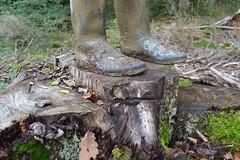321 -- Dunlop hevea Ripped Wellies -- Bottes Hevea Dunlop trouées --  Gummistiefel Undicht -- Gescheurde laarzen (HeveaFan) Tags: rubberboots rubberlaazen 在泥里的靴子橡胶 kaplaarzen ゴム長靴 gummistiefel 威灵顿长靴 stiefel stivali stövlar ブーツ dunlop hevea aigle ripped wornout rainboots regenlaarzen wellies bottes wellworn caoutchouc galoshes wreckled trashed regenstiefel waterlaarzen soles tuinlaarzen loch leaky damaged trouée undicht versleten laarzen wellington kaput mud boue fertig riss gomma trou abgelatscht kaputt lek gumboots boots bottas vredesteinlaarzen vredesteinwellies vredesteinstiefel