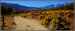 ANOTHER DIRT ROAD (Gary Post) Tags: another dirt road