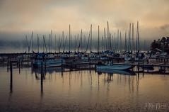 Watkins Glen Harbor (Jennifer MacNeill) Tags: harbor boat boats fog mist misty morning early light water seascape watkins glen ny newyork finger lakes jennifermacneill