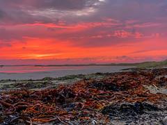 Terschelling (Anchye) Tags: terschelling waddeneiland strand water sand beach lovethesea loveholland waddenzee noordzee sunset zonsondergang