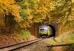 Skratka cez kopanice VII.   845.201   Ex 1062   Arriva   Paprad - Poriadie (lofofor) Tags: nm kopanice cez novémesto skratka ex vrbovce myjava javorina my lokálka bielekarpaty poriadie myštreka čachtická trať121 nadváhom myjavská slovakia express sk sr arriva svk 1060 stanica vozeň motorový odklon motorák žst súkromník autumn fall rail railway trains slovensko railways railroads 845 jeseň železnica vlaky exdb 945201 845201 trees tree les forest tunnel tunel paprad žľab poriadský plesnivosť