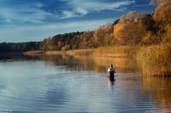 In October at the lake (bożenabożena) Tags: landskape autumn october lake sunset sky clouds water canonphotography canoneos80d trees autumntrees krajobraz jesień październik zachodsłońca niebo chmury woda jesienne drzewa